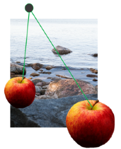 Workshop_low-hanging_fruits_in eutrophication_management_of_the_Baltic_Sea.png